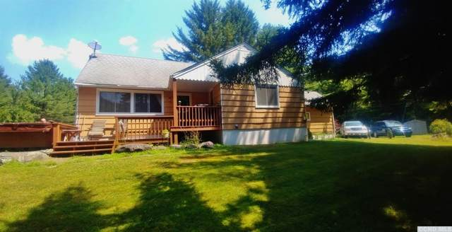 123 Ryan Rd., Jewett, NY 12444 (MLS #130617) :: Gabel Real Estate