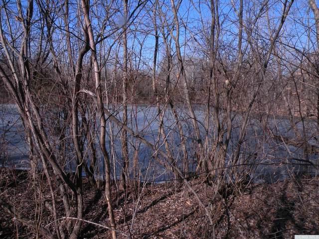 51 E Dorsey Lane, Hyde Park, NY 12538 (MLS #130700) :: Gabel Real Estate