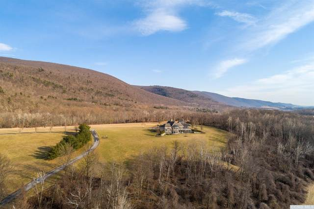 315 Weedmine, Copake, NY 12516 (MLS #130904) :: Gabel Real Estate