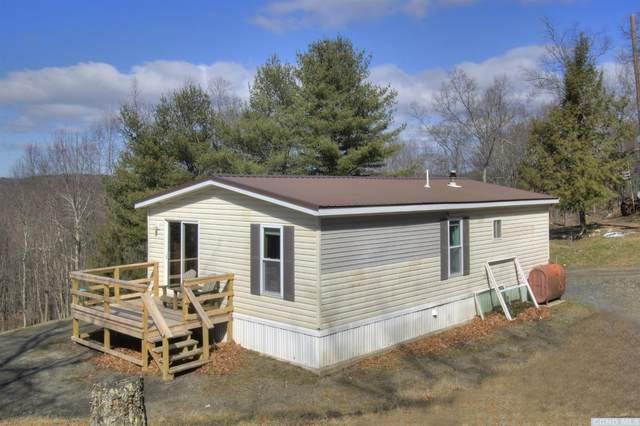 176 Berkshire Road, Taghkanic, NY 12529 (MLS #131091) :: Gabel Real Estate