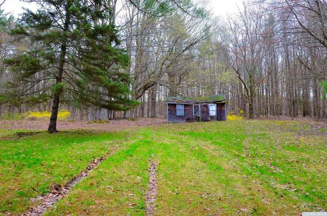 0 Old Hudson Turnpike, Canaan, NY 12029 (MLS #131465) :: Gabel Real Estate