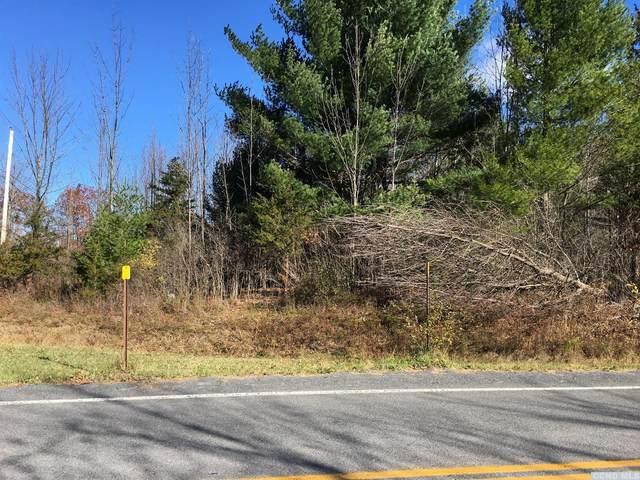 0 Rte. 20B, Durham, NY 12422 (MLS #131564) :: Gabel Real Estate