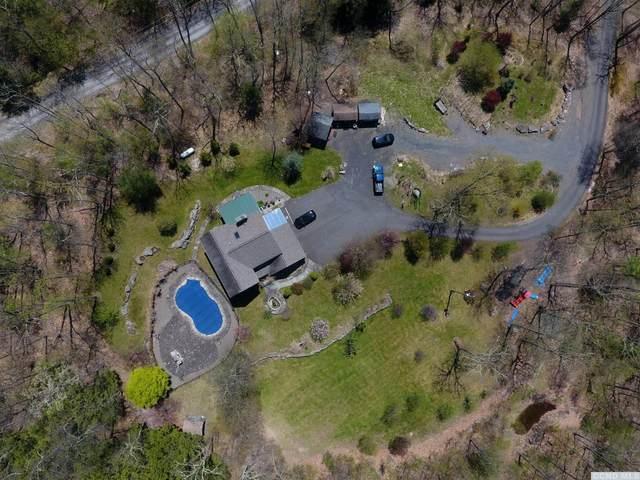 402 Dave Elliott Road, Saugerties, NY 12477 (MLS #131591) :: Gabel Real Estate