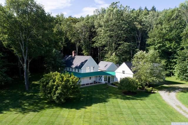 28 Troutbeck Crescent, Amenia, NY 12501 (MLS #131594) :: Gabel Real Estate