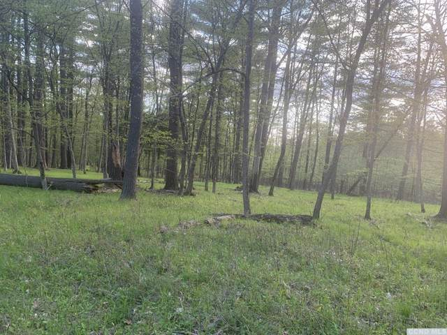 0 Lindskoog, Coeymans, NY 12007 (MLS #131663) :: Gabel Real Estate