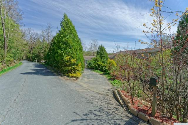 20 Calvin Cole Road, Stephentown, NY 12169 (MLS #131699) :: Gabel Real Estate