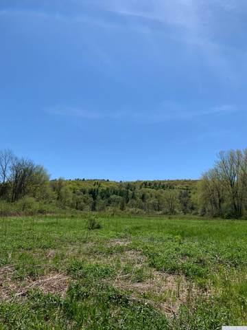 0 W 0 Memorial Drive Drive, Austerlitz, NY 12017 (MLS #131702) :: Gabel Real Estate
