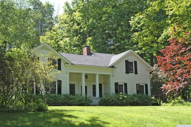 273 Old Camby Rd., Unionvale, NY 12585 (MLS #131728) :: Gabel Real Estate