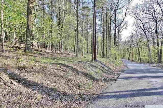 0 Mossy Hill Road, Catskill, NY 12414 (MLS #131743) :: Gabel Real Estate