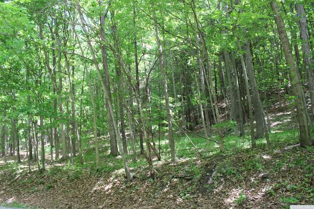 786 Route 41, Cairo, NY 12413 (MLS #131868) :: Gabel Real Estate