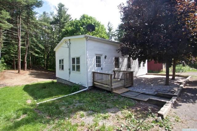 38 Robin Road, Copake, NY 12516 (MLS #131893) :: Gabel Real Estate