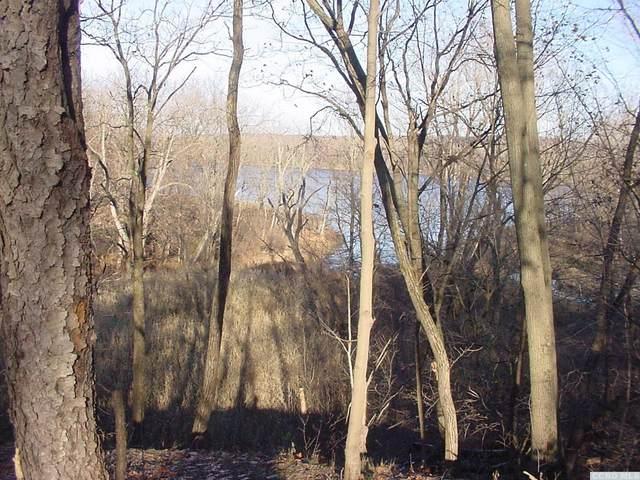 0 Nys 144, New Baltimore, NY 12124 (MLS #131949) :: Gabel Real Estate