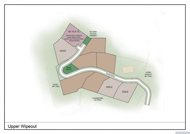 12 Club Road, Windham, NY 12496 (MLS #131991) :: Gabel Real Estate