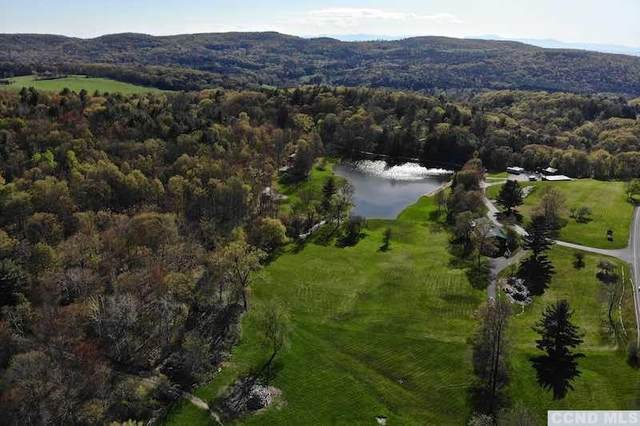 603 Route 203, Spencertown, NY 12165 (MLS #131995) :: Gabel Real Estate