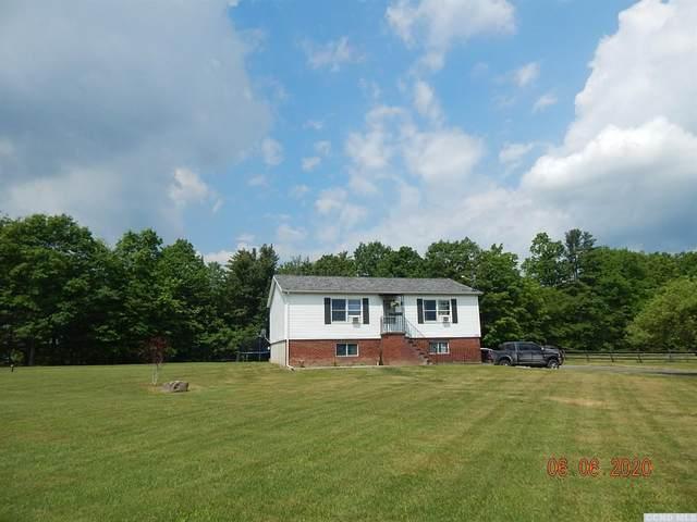 471 King Hill Road, Freehold, NY 12431 (MLS #132155) :: Gabel Real Estate
