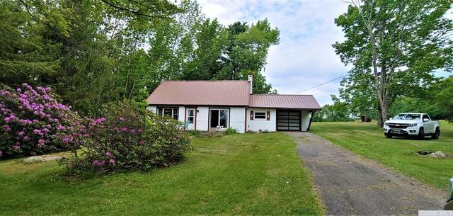 5300 Rte 23C, Jewett, NY 12444 (MLS #132159) :: Gabel Real Estate