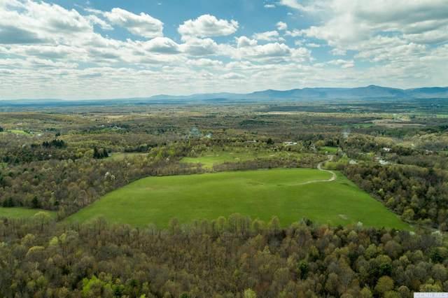 358 Taghkanic Road, Taghkanic, NY 12523 (MLS #132161) :: Gabel Real Estate