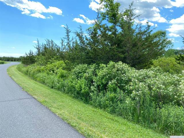 0 Sleepy Hollow Road #341, Athens, NY 12015 (MLS #132178) :: Gabel Real Estate