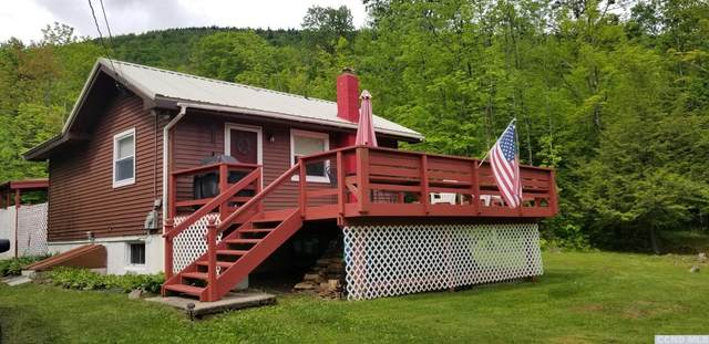 95 Beecher Road, Jewett, NY 12424 (MLS #132215) :: Gabel Real Estate