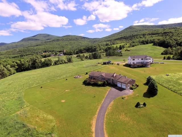 64 Wood Estates Road, Durham, NY 12418 (MLS #132266) :: Gabel Real Estate