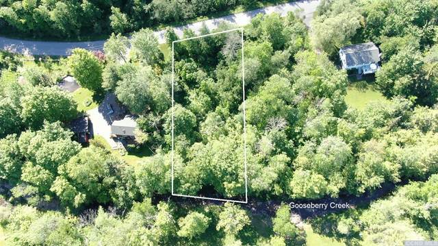 0 Brookside Drive, Tannersville, NY 12485 (MLS #132367) :: Gabel Real Estate