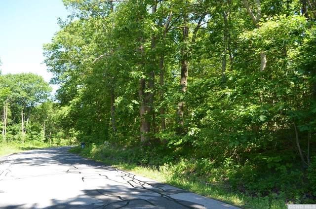 0 North Road, Red Hook, NY 12571 (MLS #132396) :: Gabel Real Estate