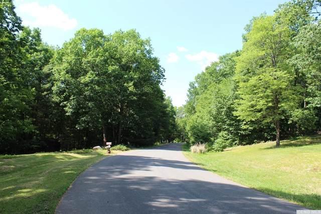 66 Knollwood Drive, Kinderhook, NY 12184 (MLS #132397) :: Gabel Real Estate