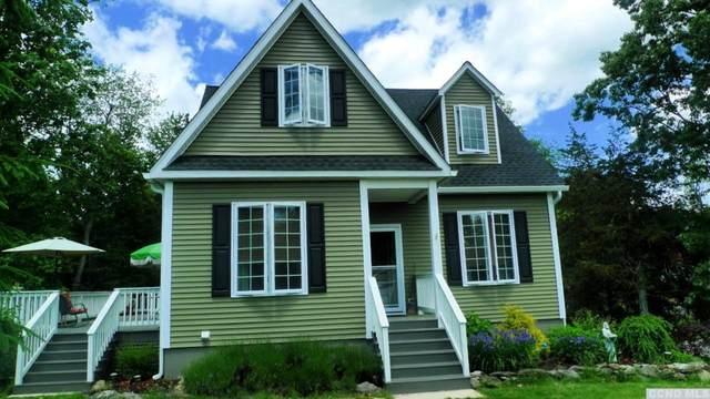 54 Shore Drive, Elizaville, NY 12523 (MLS #132473) :: Gabel Real Estate