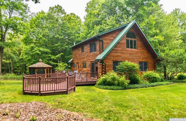 19 Lawrence Hill Way, Stanford, NY 12581 (MLS #132520) :: Gabel Real Estate