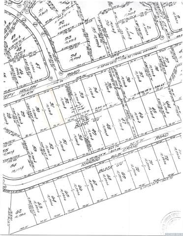 0 Sleepy Hollow Road, Athens, NY 12015 (MLS #132531) :: Gabel Real Estate