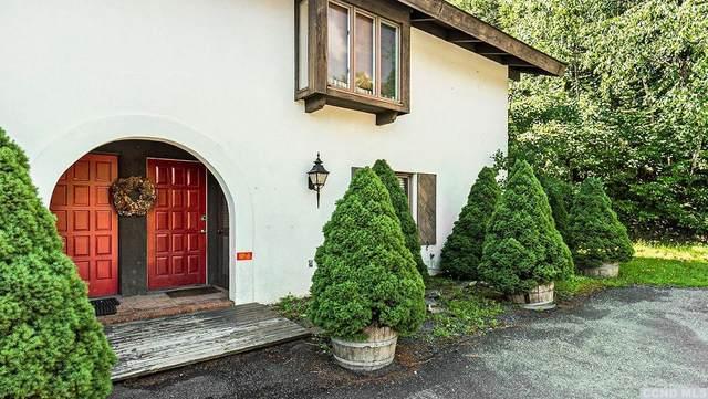 97 Cd Lane, Windham, NY 12496 (MLS #132583) :: Gabel Real Estate