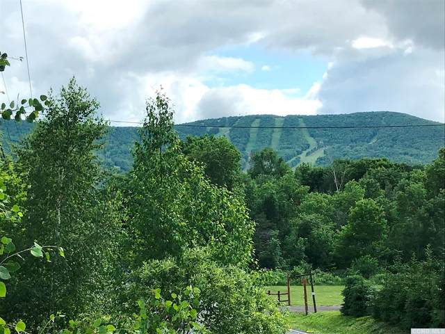 190 Mitchell Hollow Road, Windham, NY 12496 (MLS #132651) :: Gabel Real Estate