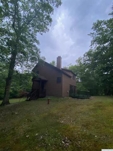 262 Bradleys Crossing Road, Chatham, NY 12037 (MLS #132671) :: Gabel Real Estate