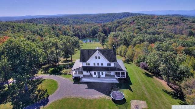 663 Wolf Hill Road, Hillsdale, NY 12529 (MLS #132732) :: Gabel Real Estate