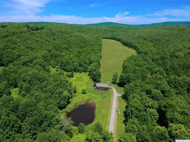 5045 Etta Post Road, Prattsville, NY 12468 (MLS #132747) :: Gabel Real Estate