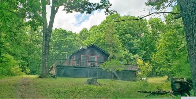 159 Scannell Road, Ghent, NY 12075 (MLS #132753) :: Gabel Real Estate