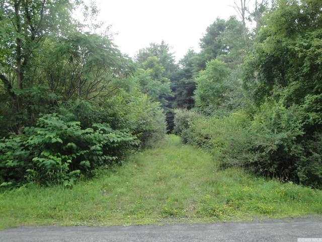 0 Irving Road, Greenville, NY 12083 (MLS #132763) :: Gabel Real Estate