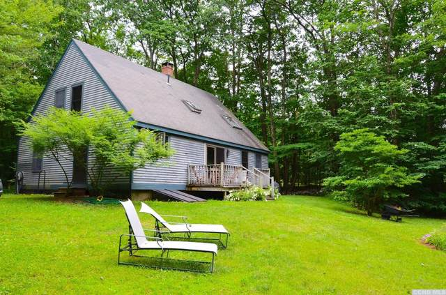 58 Robinson Hollow Way, Stephentown, NY 12168 (MLS #132783) :: Gabel Real Estate