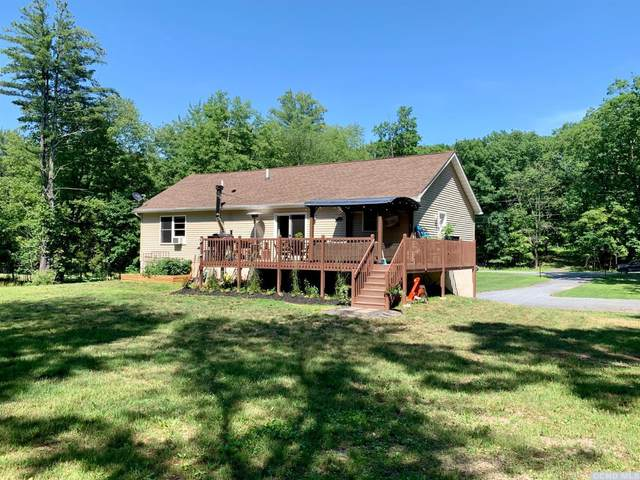 100 Paradise Lake Road, Catskill, NY 12414 (MLS #132822) :: Gabel Real Estate
