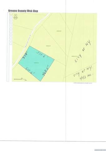 38 Rappleyea Road, Lexington, NY 12452 (MLS #132824) :: Gabel Real Estate