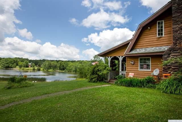 81 Syl Jen Maur Lane, Prattsville, NY 12468 (MLS #132832) :: Gabel Real Estate