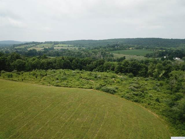 1097 County Route 27, Taghkanic, NY 12521 (MLS #132853) :: Gabel Real Estate