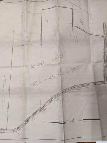 0 Big Woods Road, Greenville, NY 12083 (MLS #132901) :: Gabel Real Estate