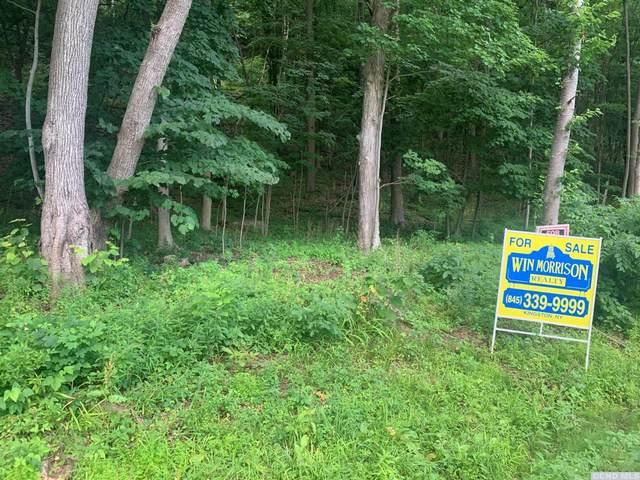 64 Brooks Lane, Catskill, NY 12414 (MLS #132931) :: Gabel Real Estate