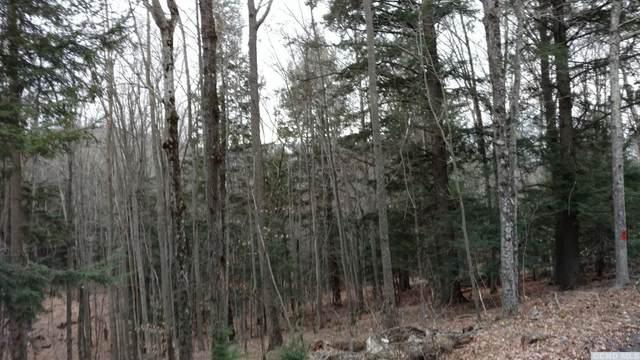 0 Old Rd., Windham, NY 12496 (MLS #132994) :: Gabel Real Estate