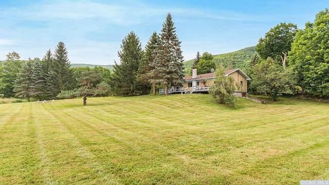 167 Rappleyea Road, Lexington, NY 12454 (MLS #133025) :: Gabel Real Estate
