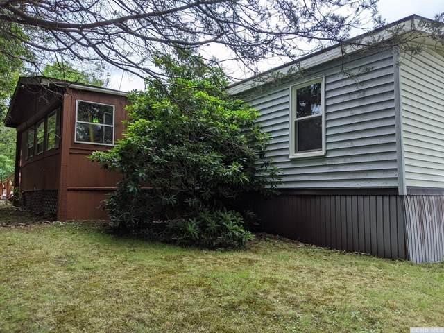 204 Irving Road, Greenville, NY 12083 (MLS #133068) :: Gabel Real Estate
