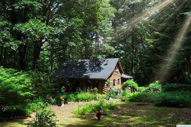 5564 State Route 9H, Greenport, NY 12534 (MLS #133097) :: Gabel Real Estate