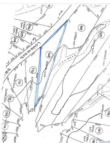 169 Longwood Drive, Athens, NY 12015 (MLS #133145) :: Gabel Real Estate