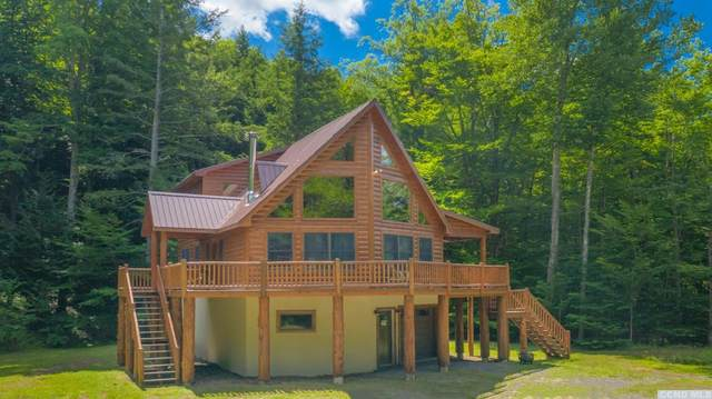 5545 Route 67, East Durham, NY 12422 (MLS #133223) :: Gabel Real Estate